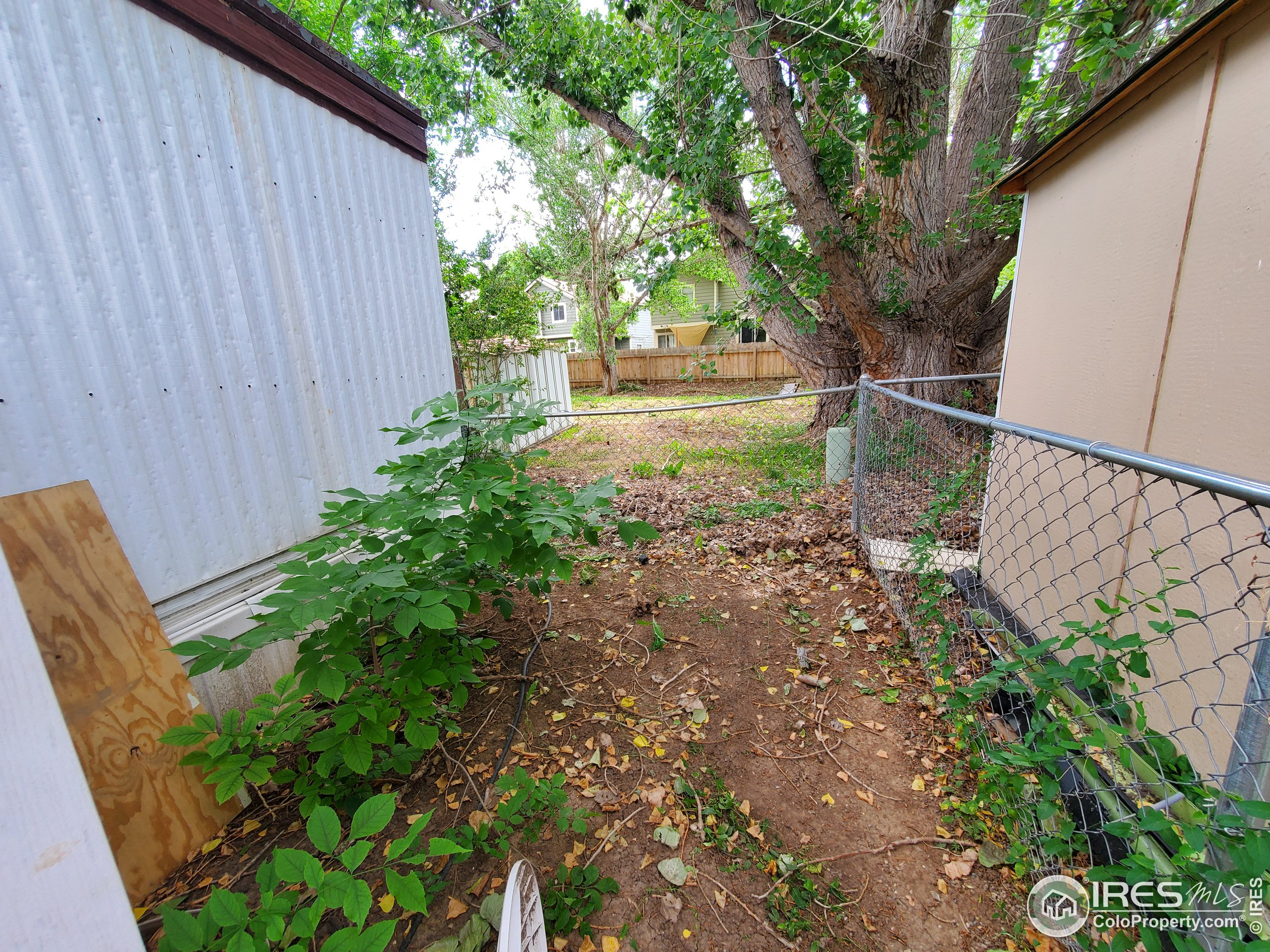 Side fenced yard for your dog!