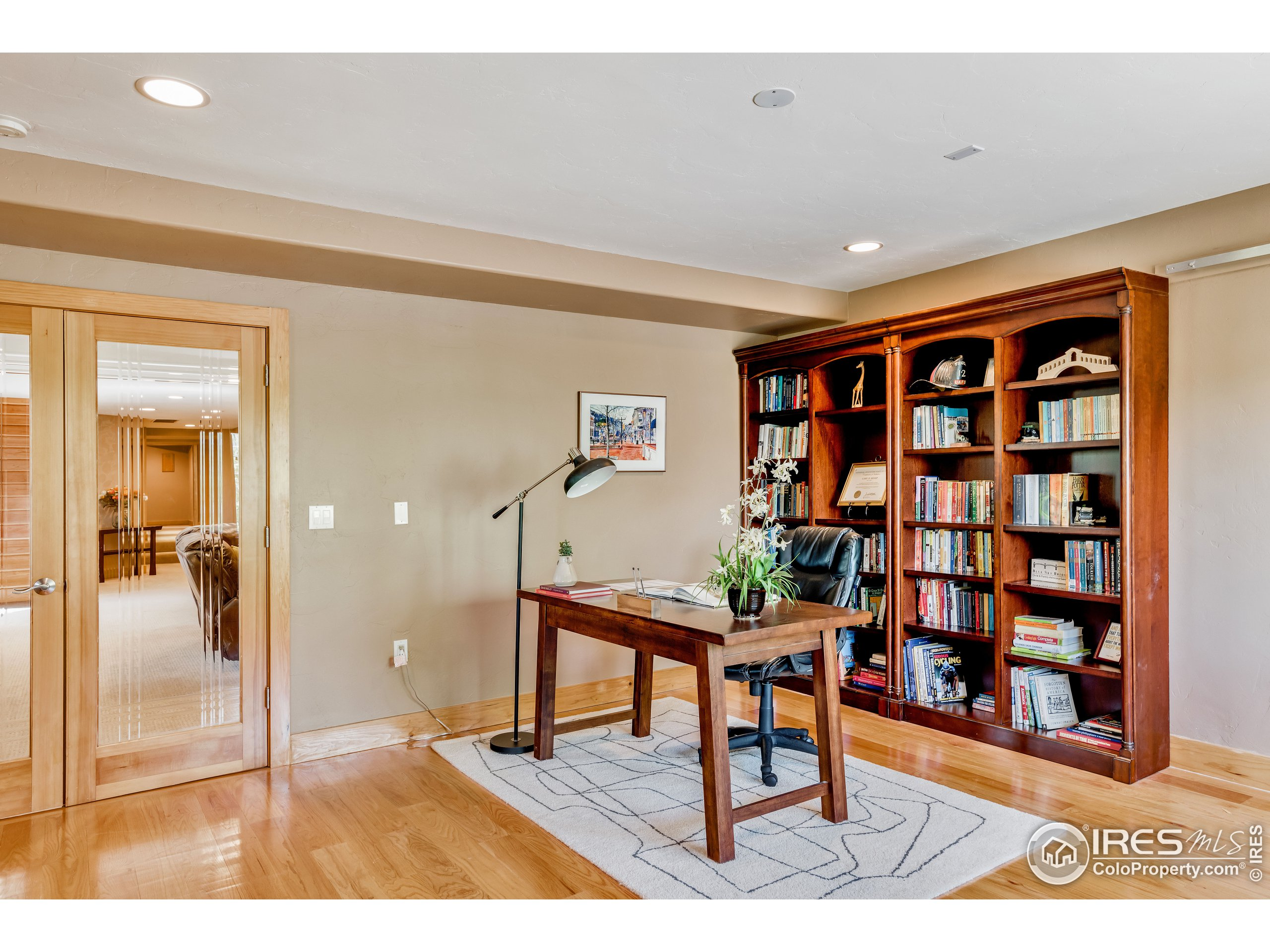 Lower Level Office or 6th Bedroom