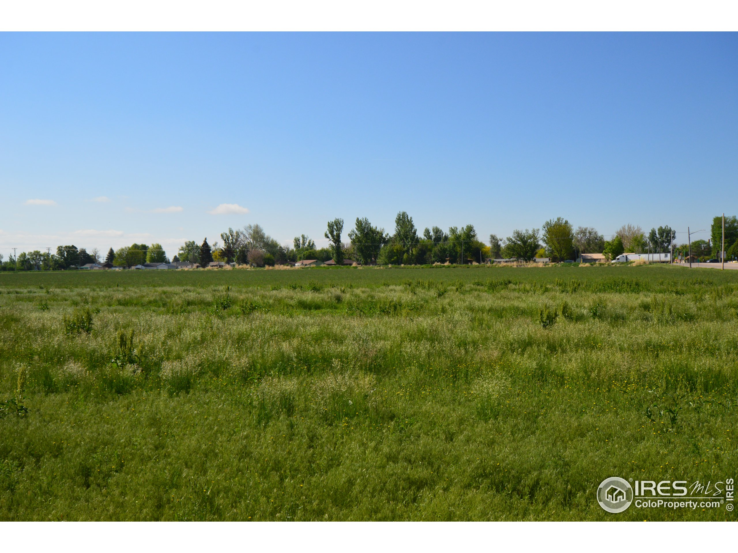 Over 1.5 acres of Commercial Land for Sale!