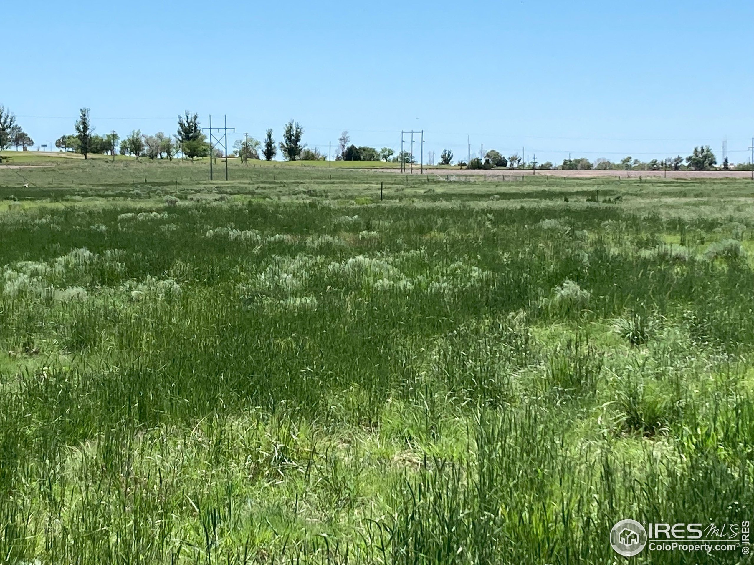 View 35 acres May