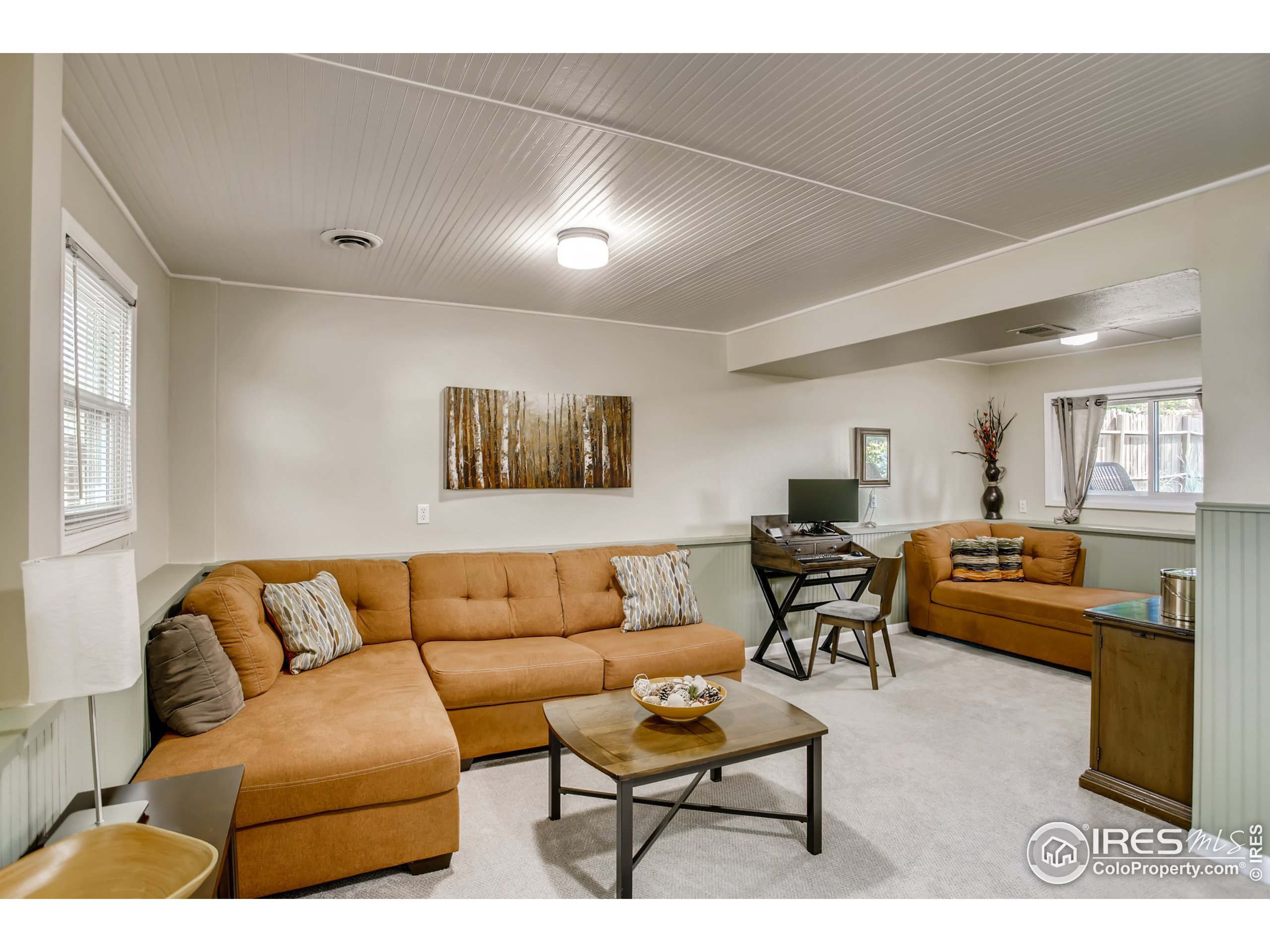 Lower Level Bedroom or Second Living Area/Rec Room