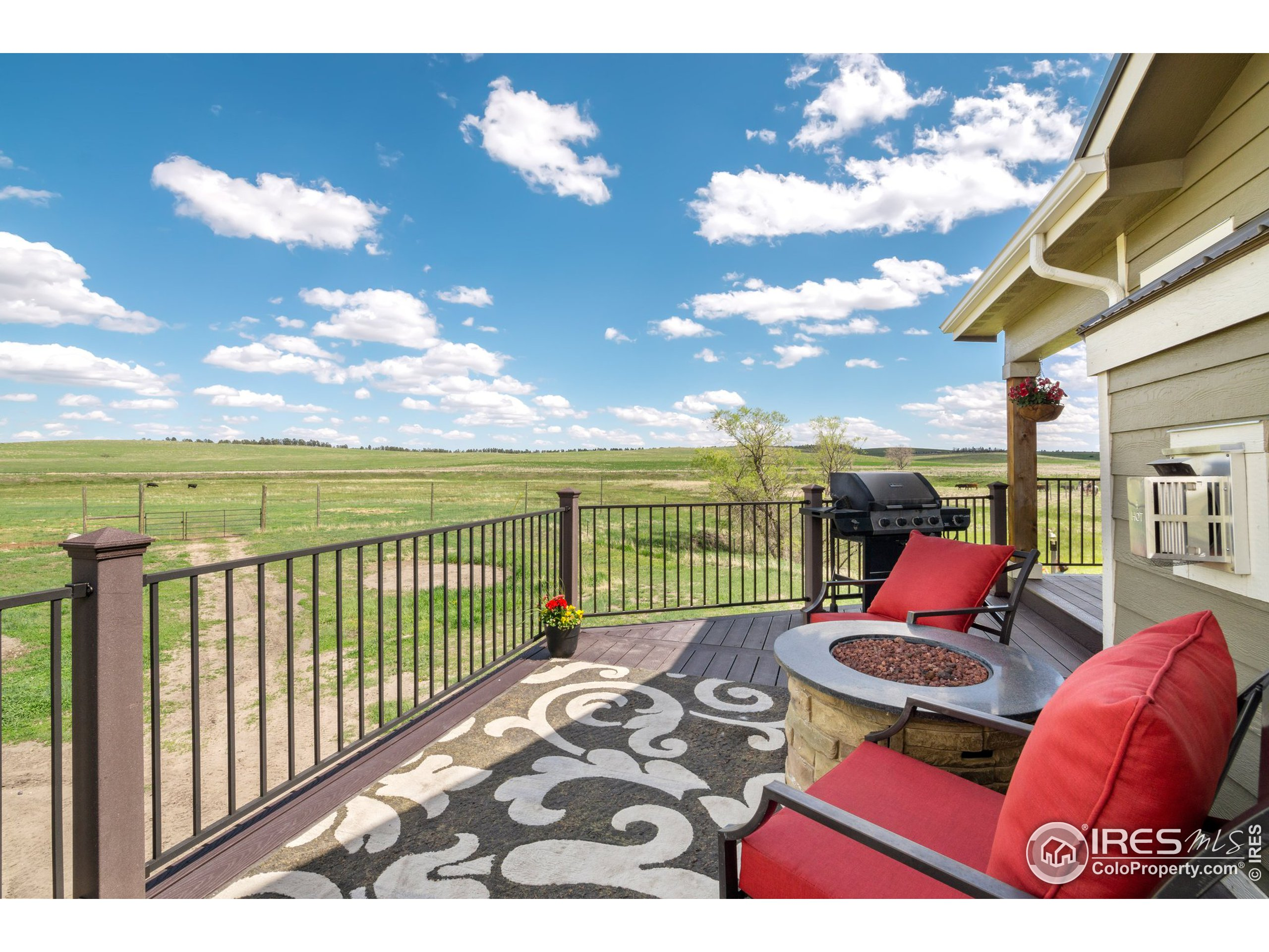 Stunning 360 degree views from the trex deck