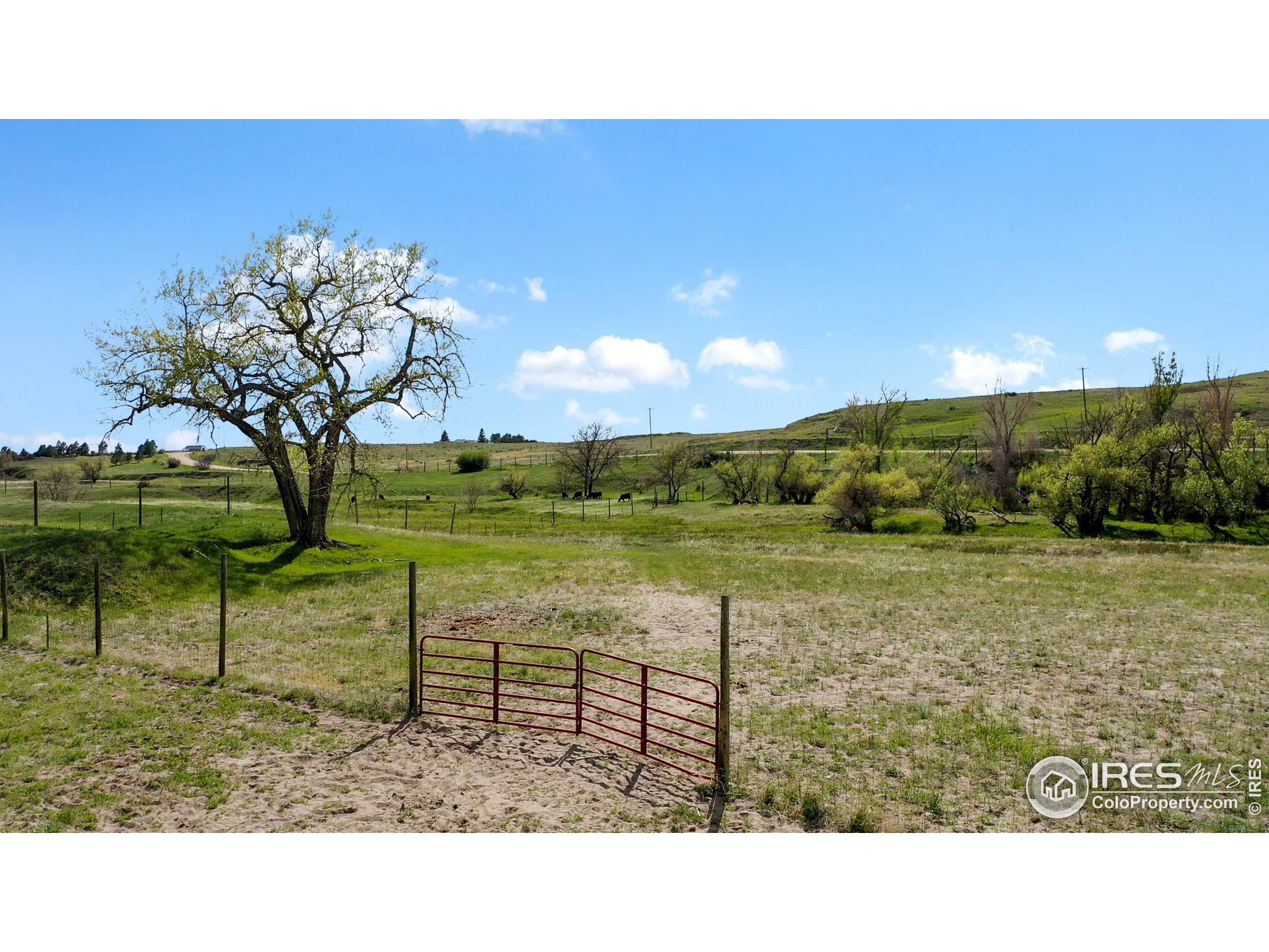 60-Acres of very useable flat land and a continuous creek flowing across the property