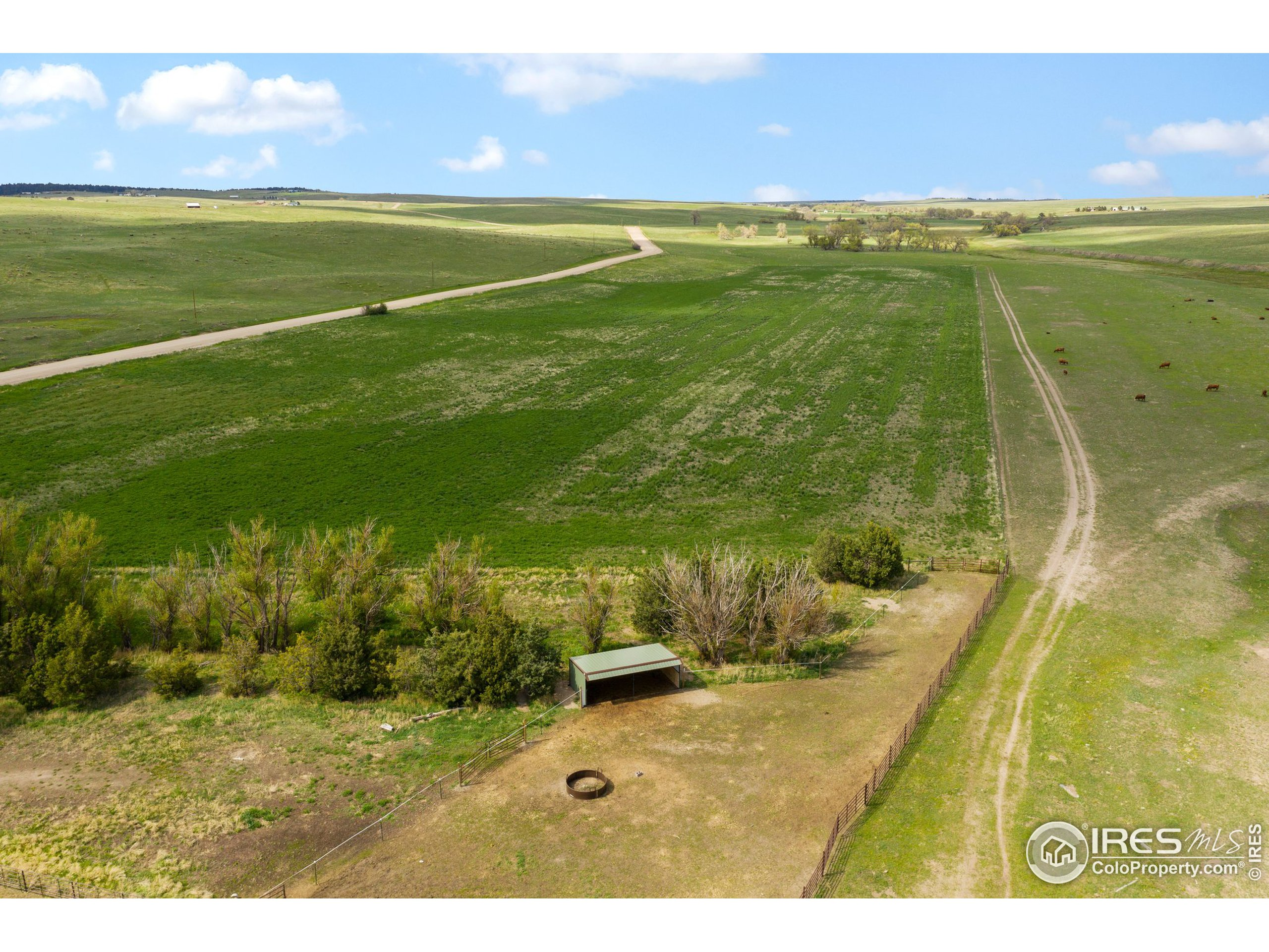 20 Acres of Alfalfa/Grass mix producing approximately 500 hay bales per year