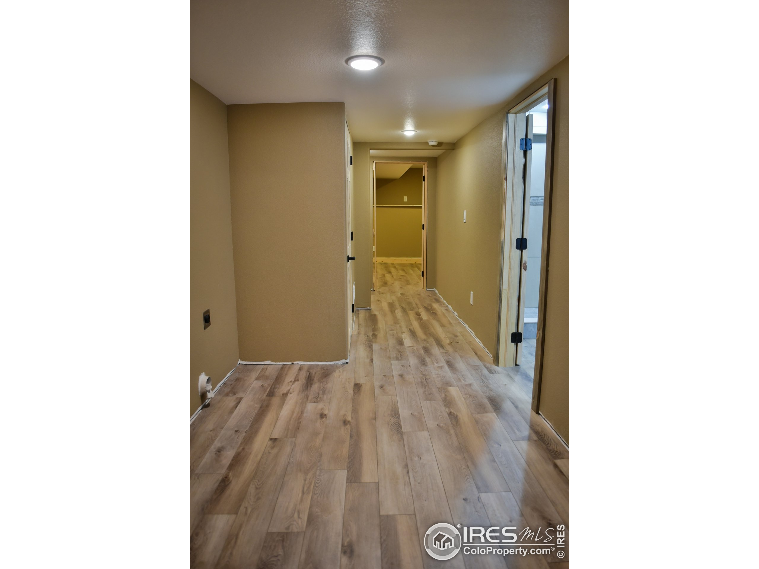 1 of 2 storage room/study/offices in the basement.