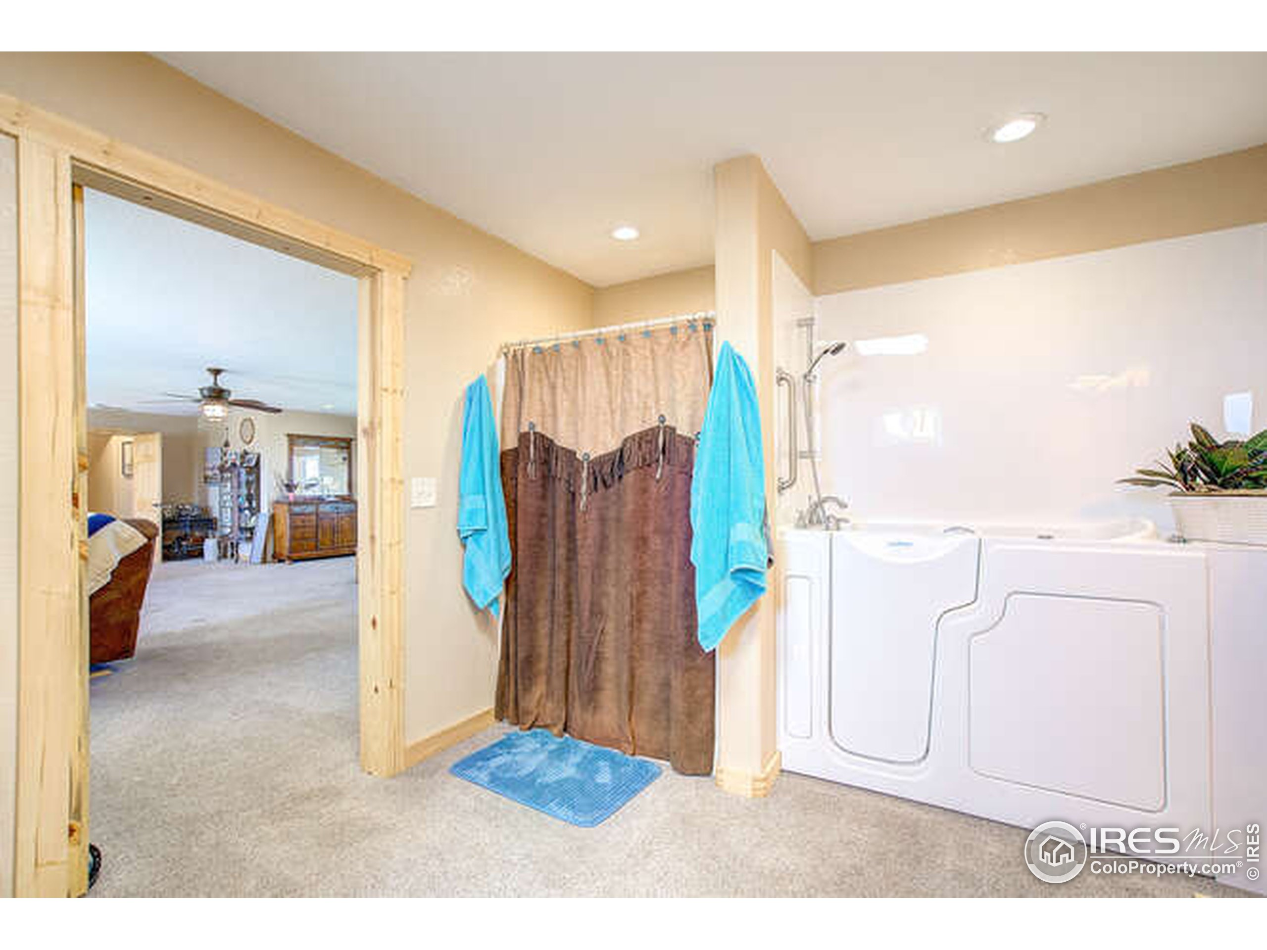 master bath handicapped accessible