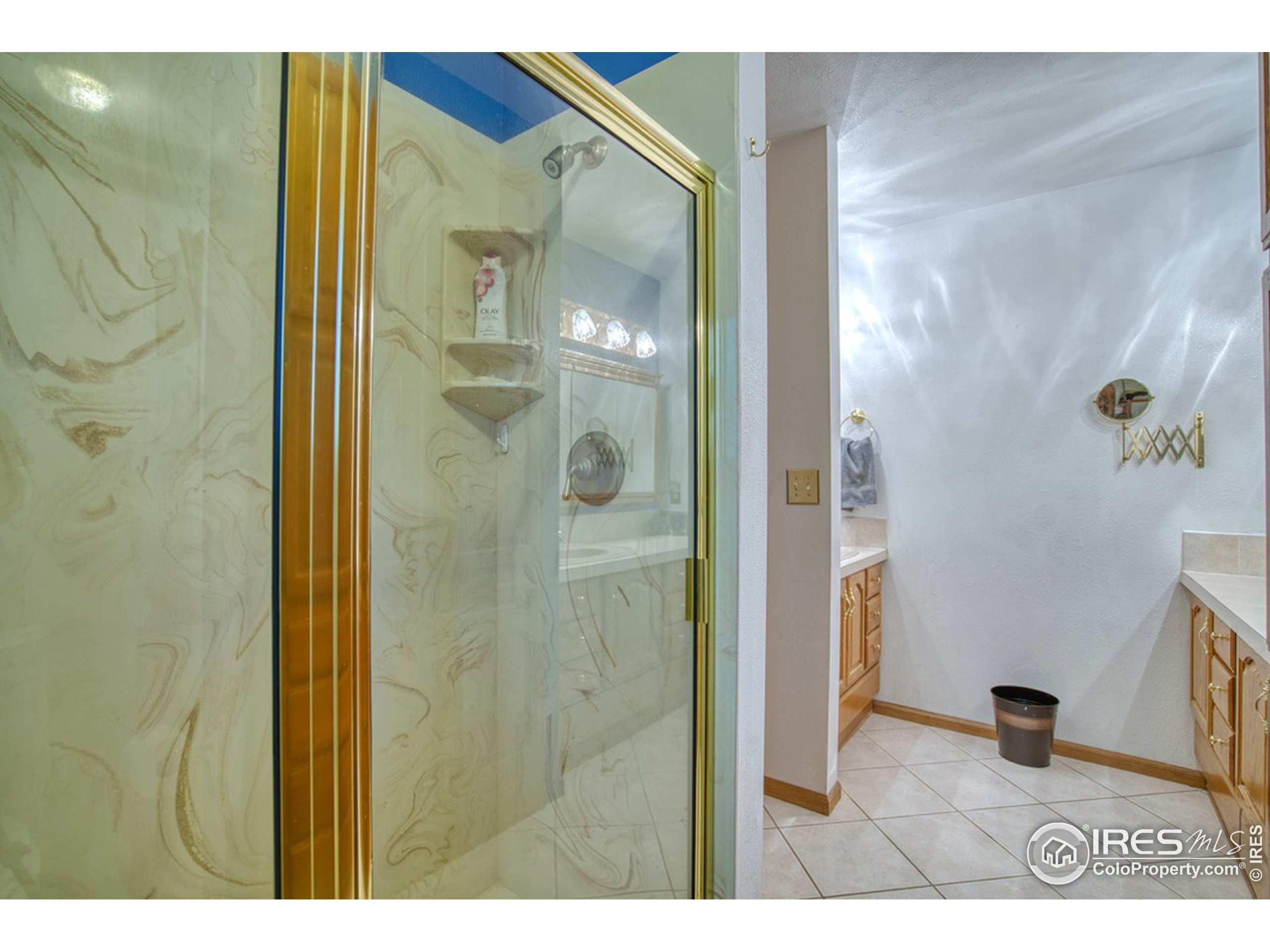 Primary Bathroom with Walk-in Shower