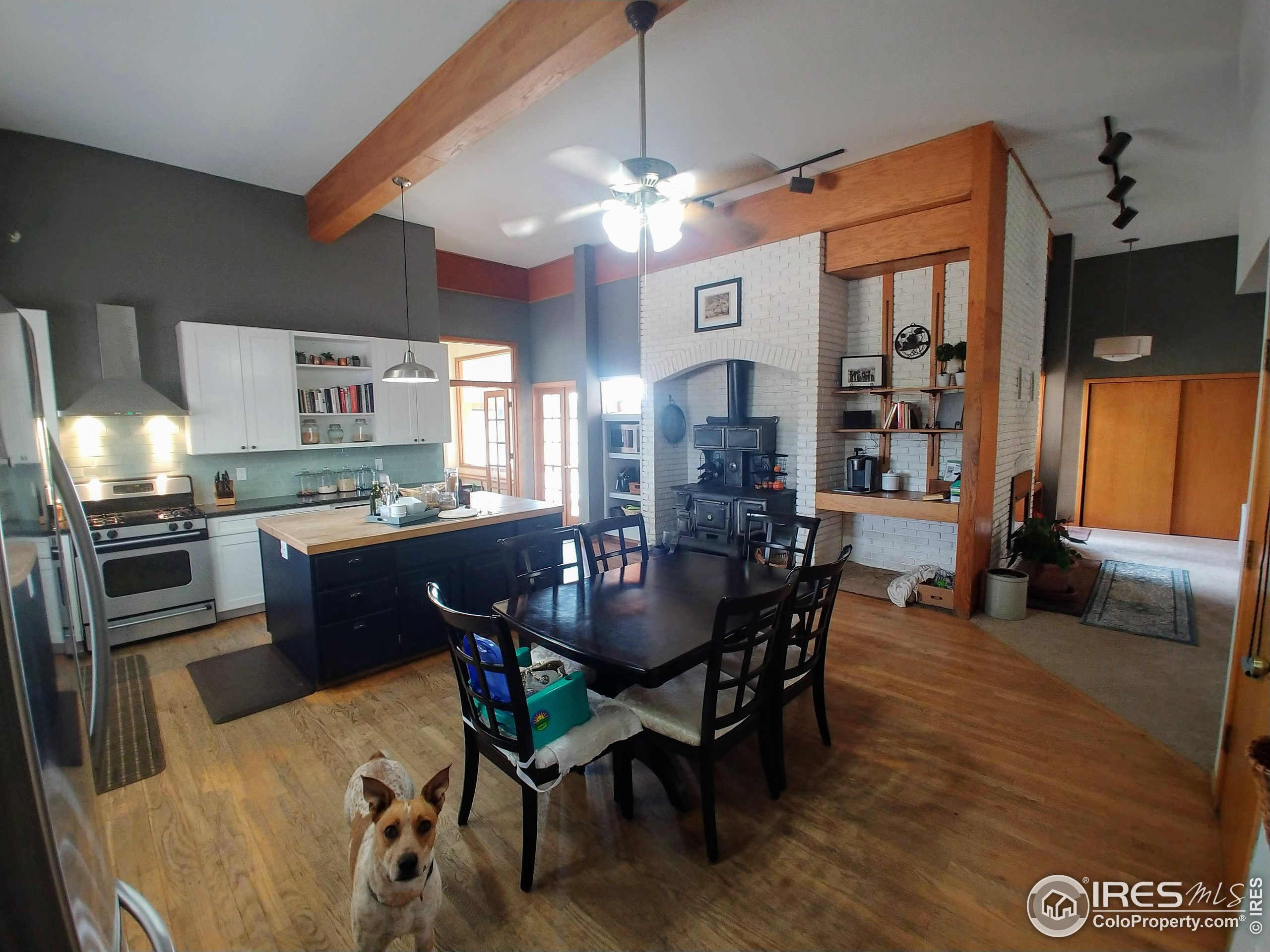 Kitchen from near garage entry. LR is on the R, FR and sunroom doors to the L of the woodstove. Buddy is not included :)