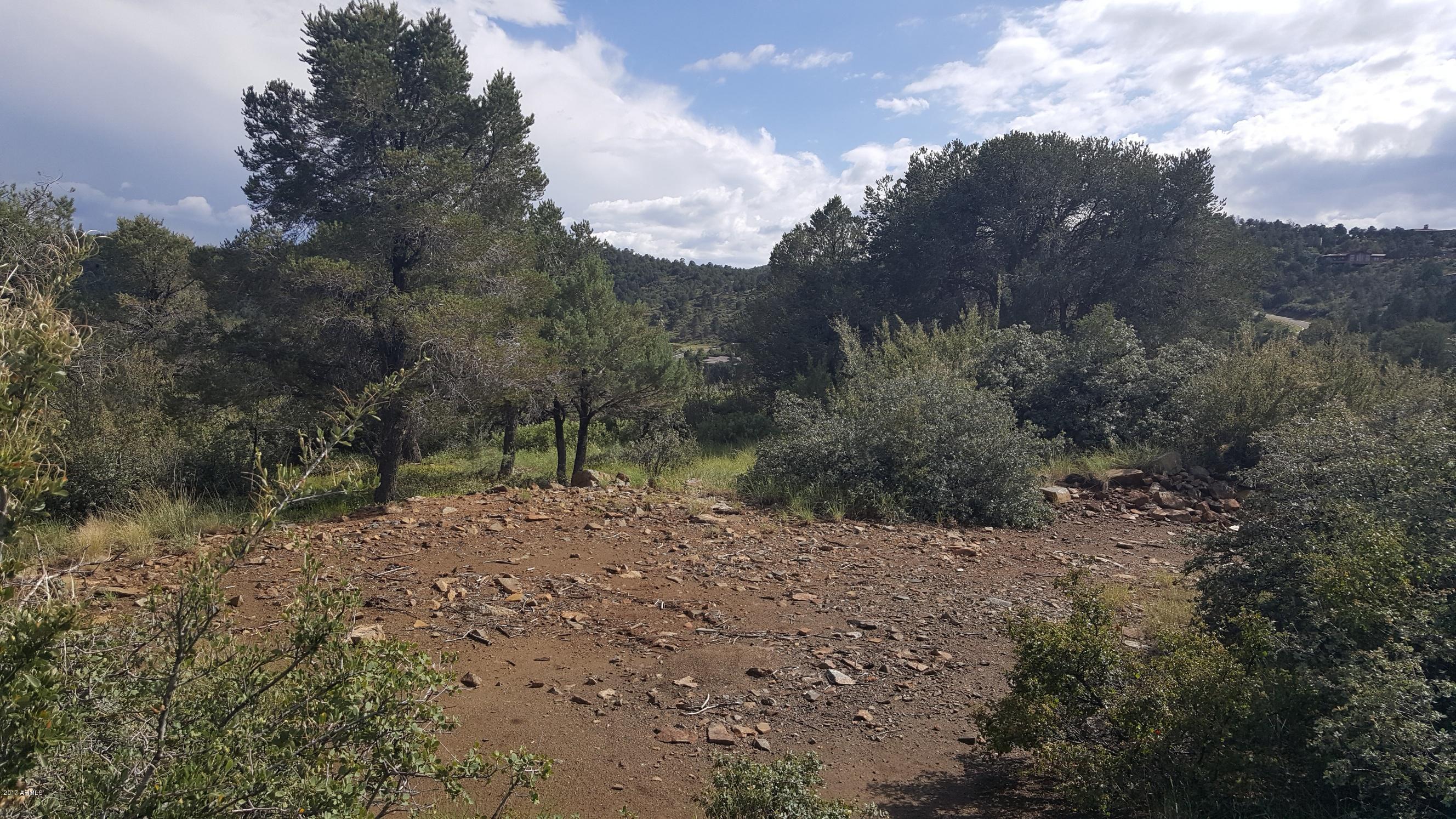 568 SANDPIPER Drive # 799, Prescott, Arizona 86303, ,Land,For Sale,568 SANDPIPER Drive # 799,5650473