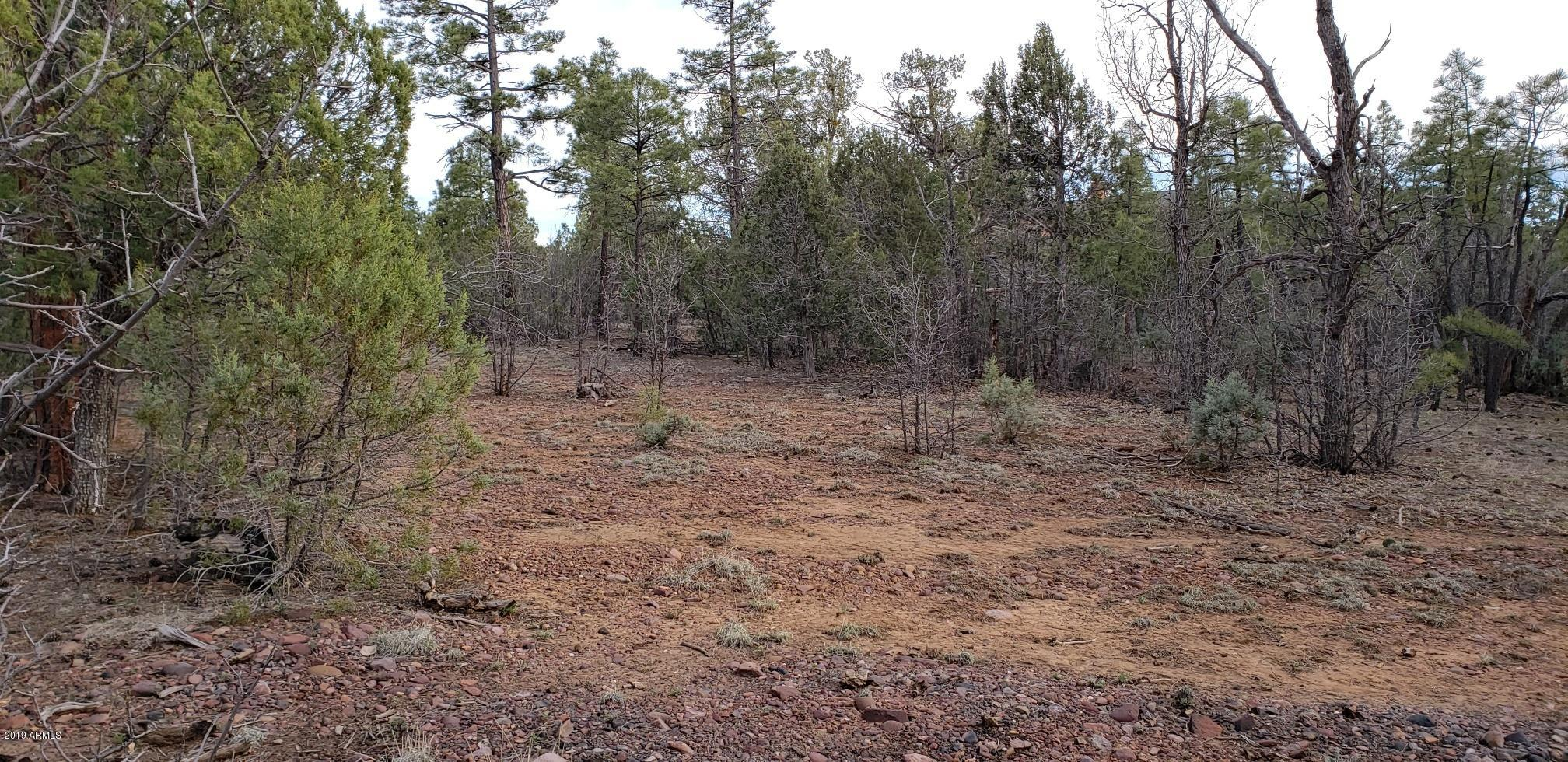 1580 S FALLING LEAF Road # 303, Show Low, Arizona 85901, ,Land,For Sale,1580 S FALLING LEAF Road # 303,5925120