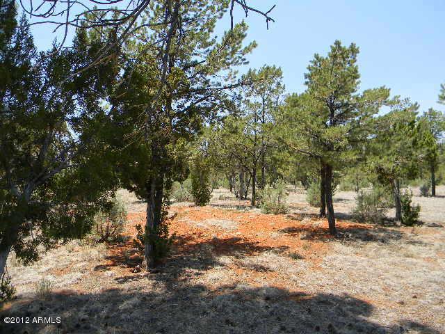 2760 JAGUAR Circle # 303, Overgaard, Arizona 85933, ,Land,For Sale,2760 JAGUAR Circle # 303,6023583