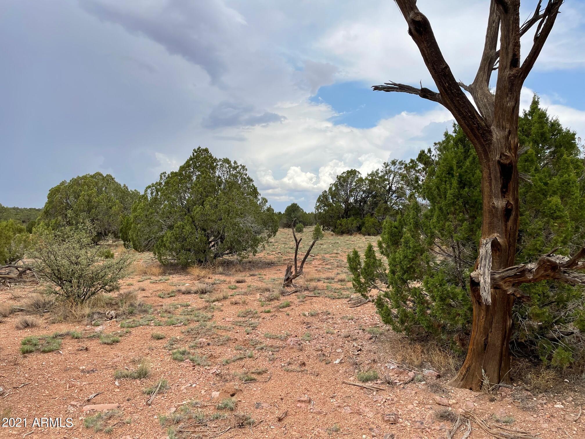 Lot 150 Antelope Run Road # 150, Peach Springs, Arizona 86434, ,Land,For Sale,Lot 150 Antelope Run Road # 150,6041588