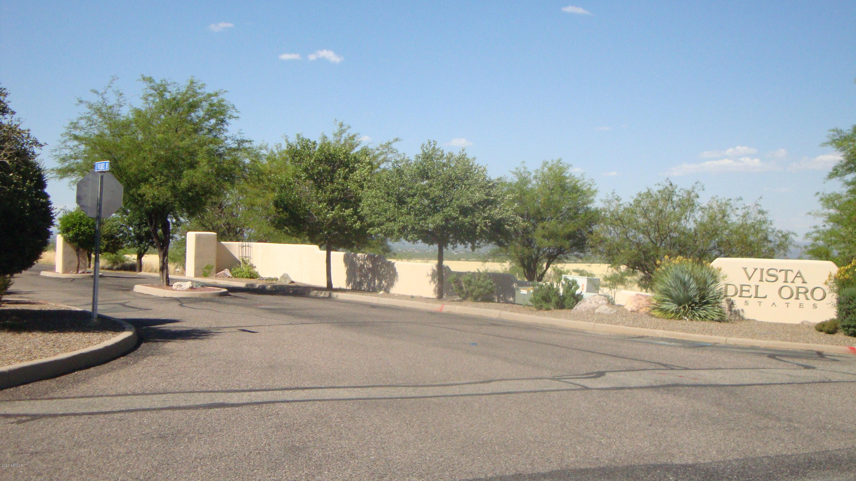 Lot 17 S Palisades Drive # 17, Hereford, AZ 85615, ,Land,For Sale,Lot 17 S Palisades Drive # 17,6065554