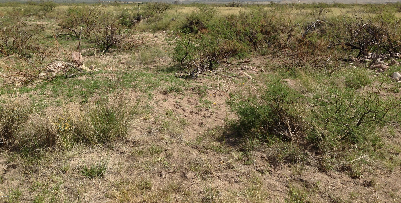 Tbd 2 N Rascal Ranch Road, Huachuca City, Arizona 85616, ,Land,For Sale,Tbd 2 N Rascal Ranch Road,6105329