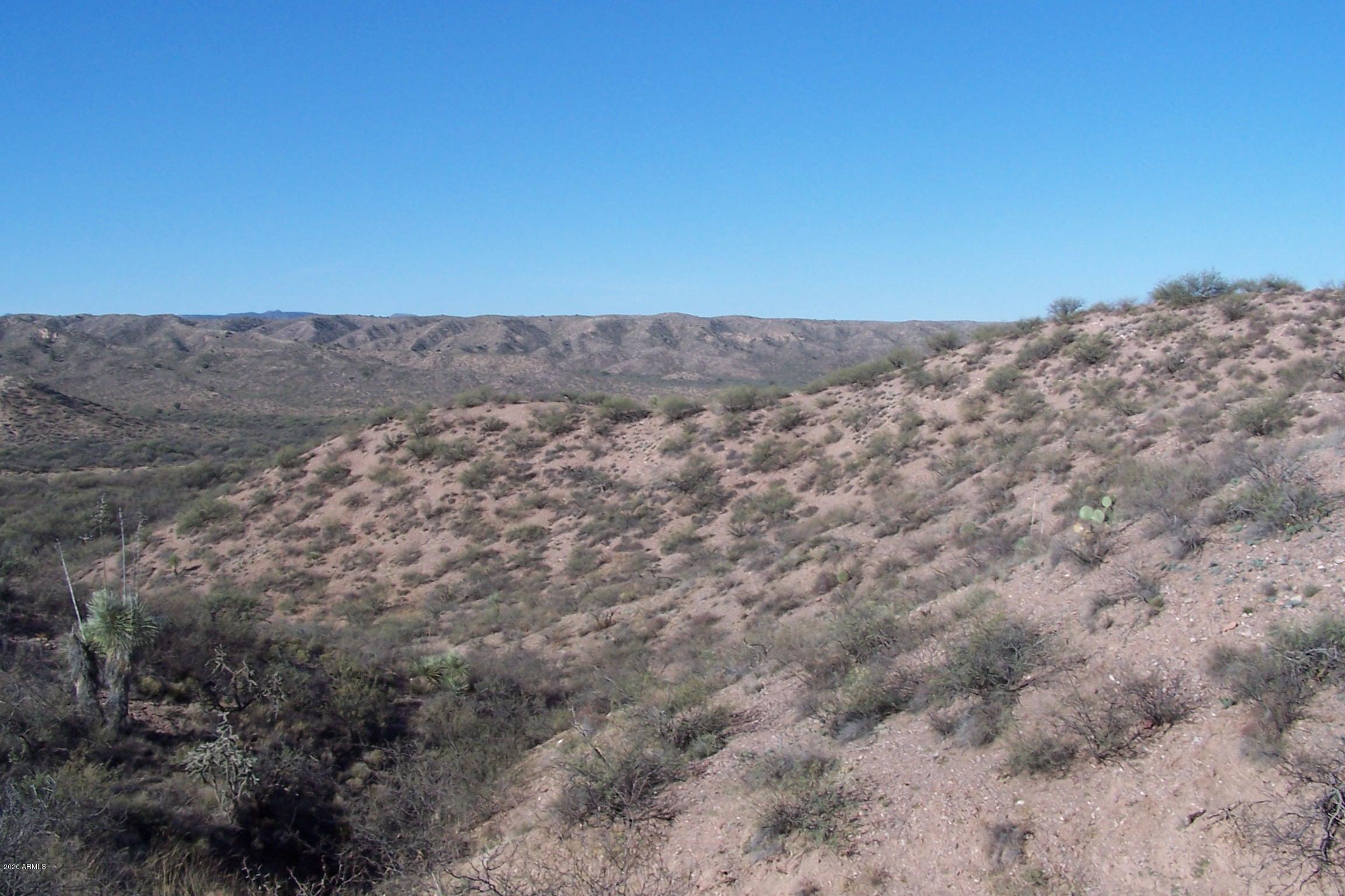 Lot 204 42ac Pronghorn Ridge Road # 204, Willcox, Arizona 85643, ,Land,For Sale,Lot 204 42ac Pronghorn Ridge Road # 204,6154951