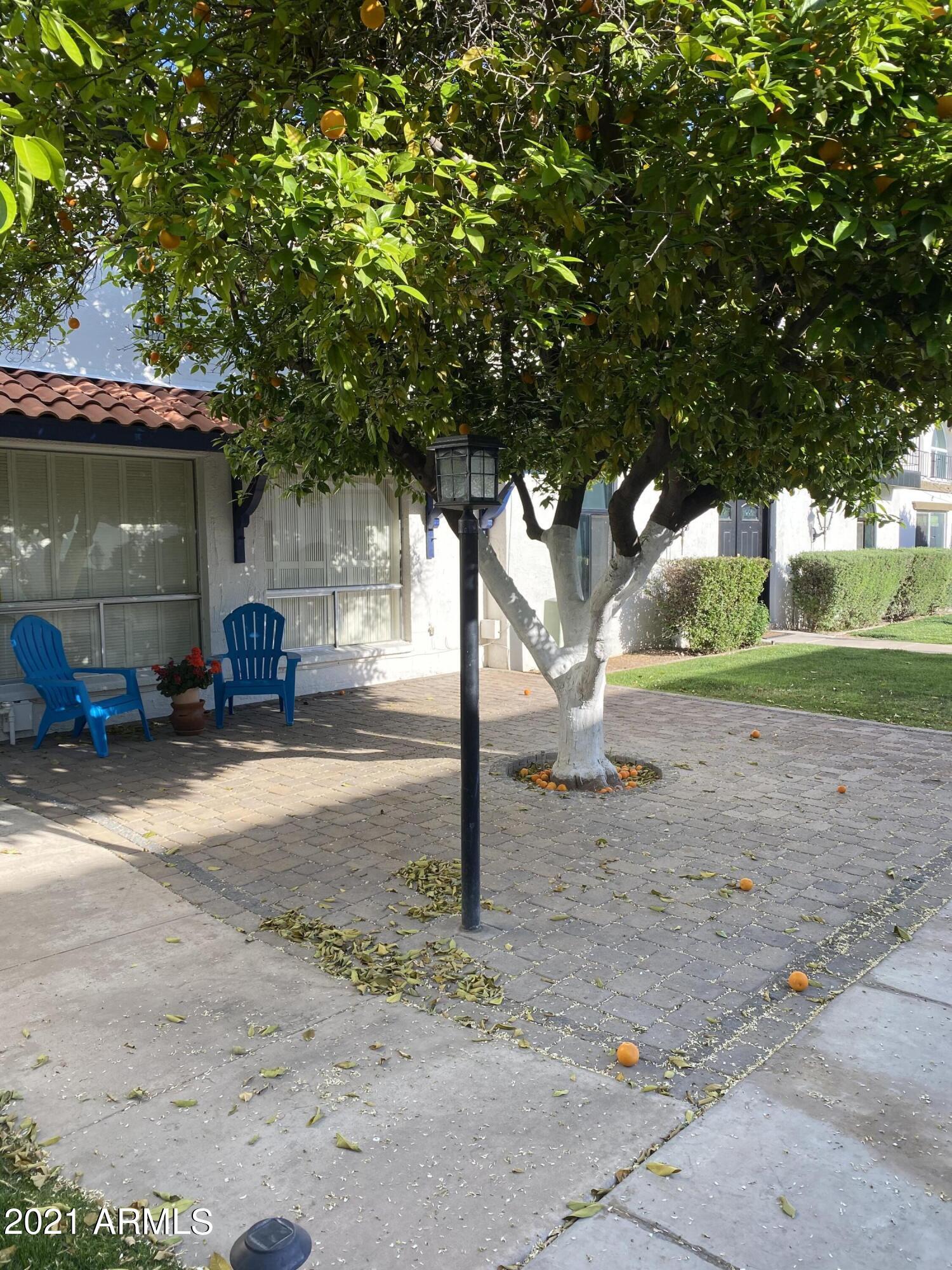 7744 E CAMELBACK Road, Scottsdale, AZ 85251, 2 Bedrooms Bedrooms, ,Residential Lease,For Rent,7744 E CAMELBACK Road,6218126