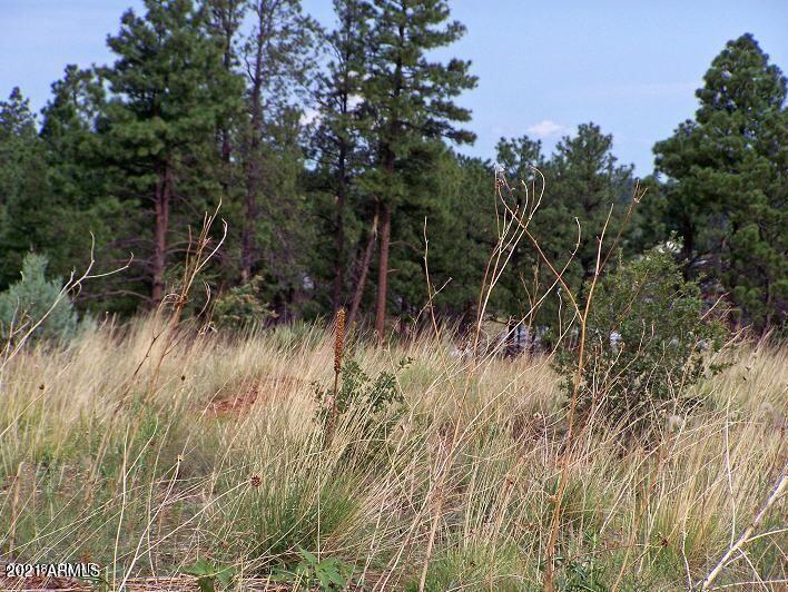 2716 Trevor Way # 016H, Overgaard, AZ 85933, ,Land,For Sale,2716 Trevor Way # 016H,6222751