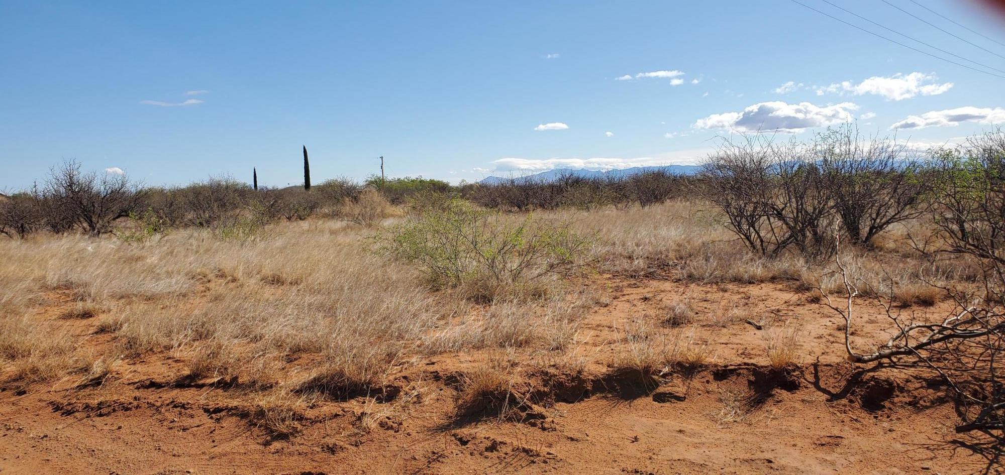 Land For Sale Huachuca City