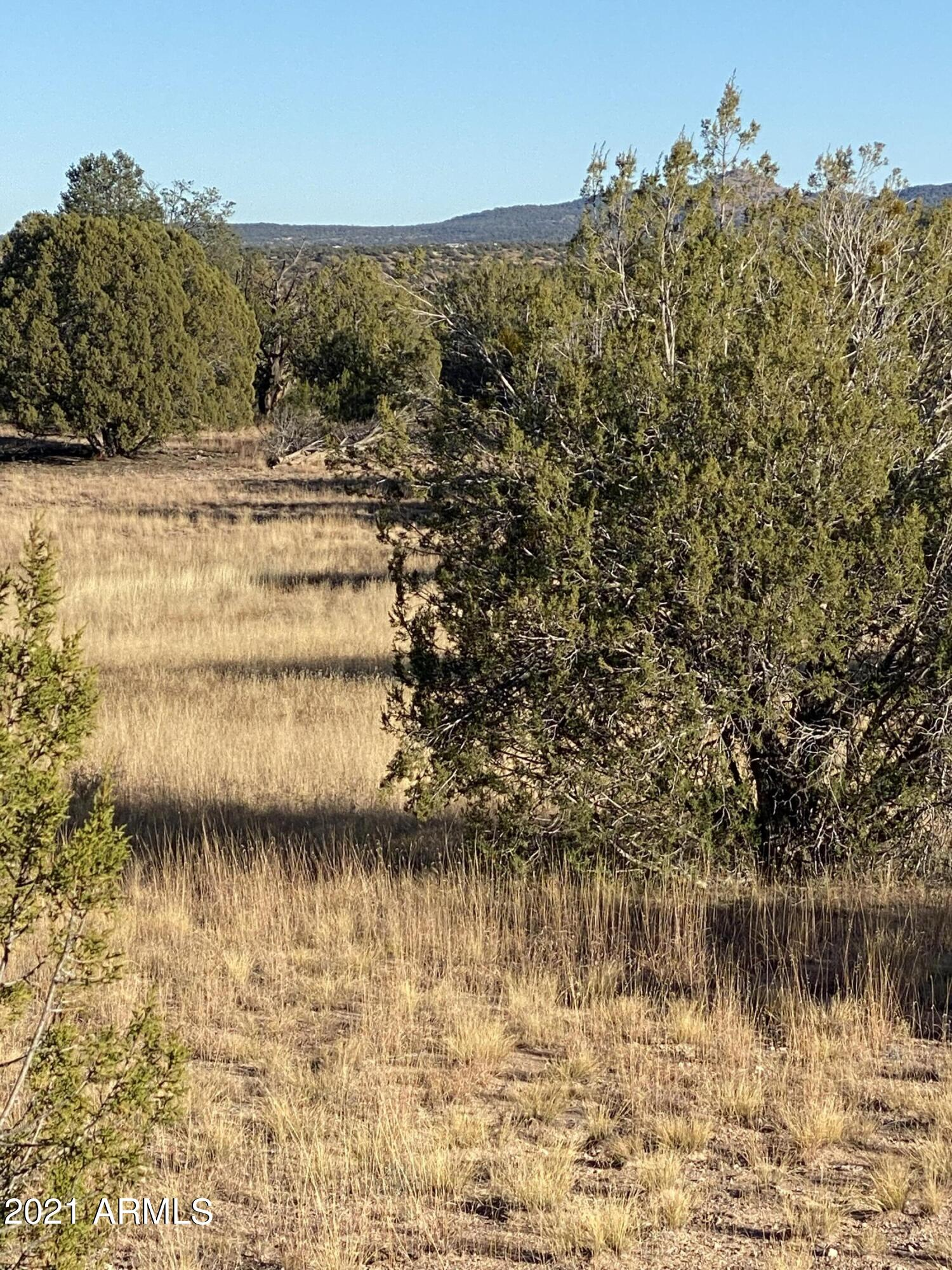 0 N Gecko Wash Drive # 118, Seligman, AZ 86337, ,Land,For Sale,0 N Gecko Wash Drive # 118,6312778